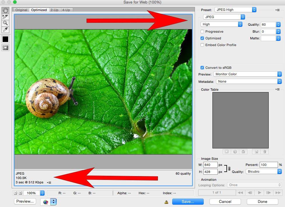 snail, leaf, photoshop