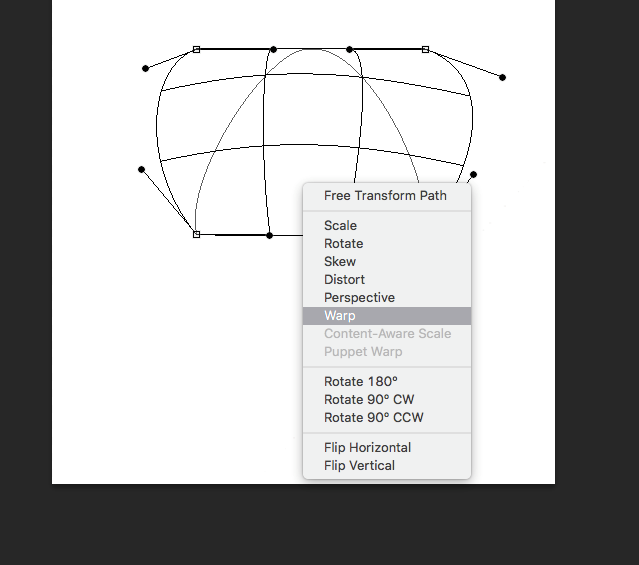 warp tool screenshot