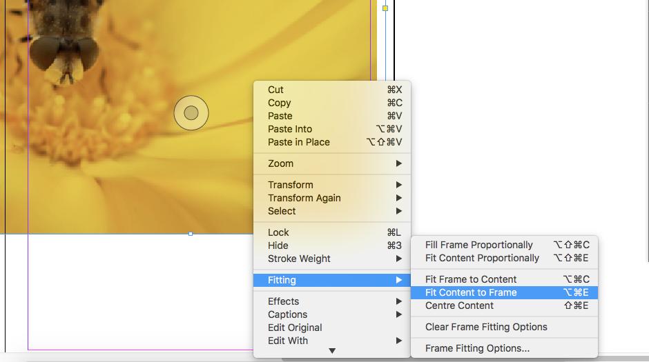 Screenshot of image box