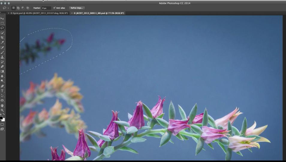 cactus - content aware fill tool
