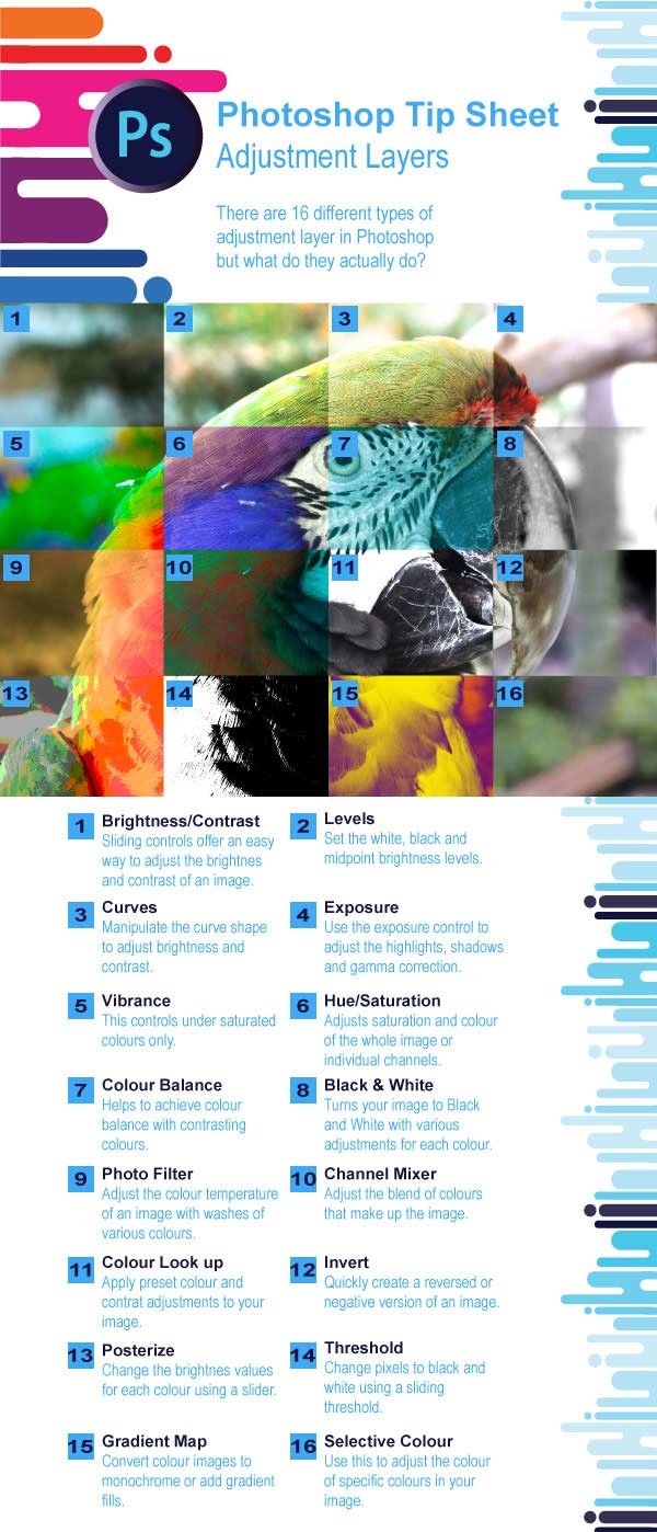 Adobe Illustrator Creative Cloud