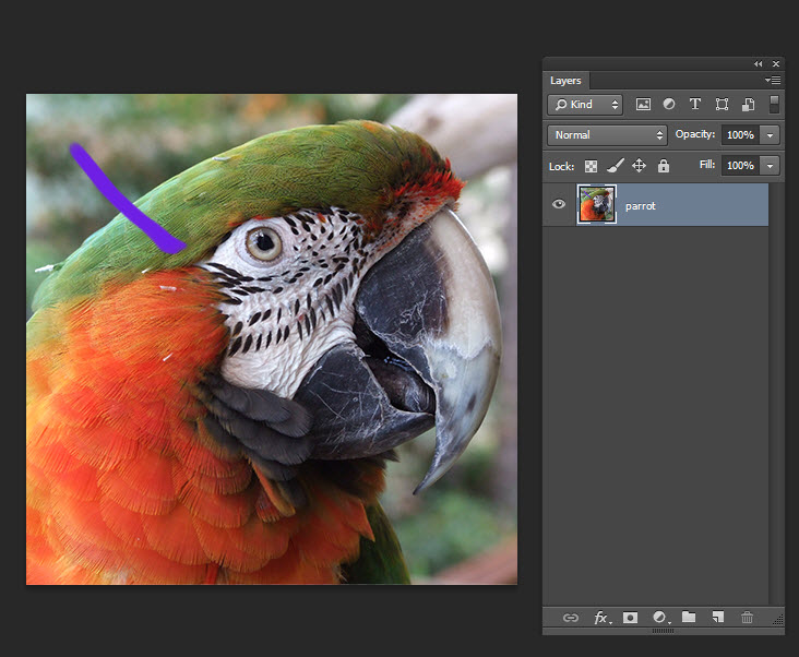Adding brush stroke to animated GIFF in adobe Photoshop