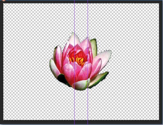 remove background adobe photoshop