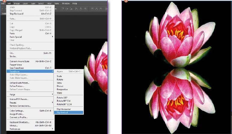 duplicate adobe photoshop layer