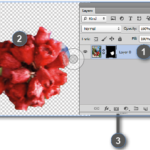 Adobe Potoshop layer mask with selections