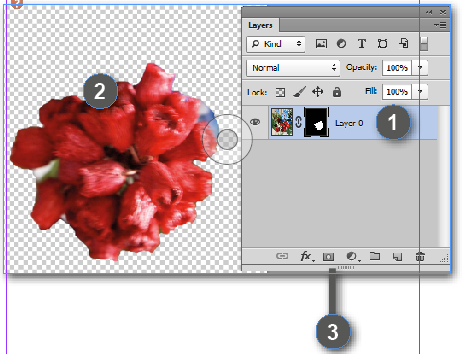 What are Adobe Photoshop Layer and Vector Masks? - Creative