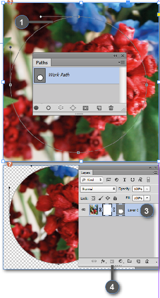 Adobe Photoshop Vector Masks