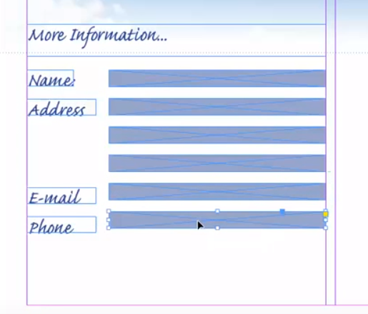 Blank form fields Adobe InDesign
