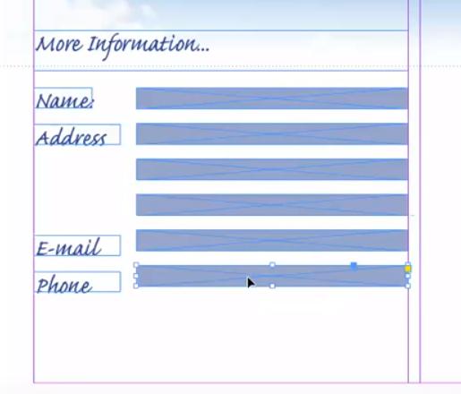 Blank form fields Adobe InDesign