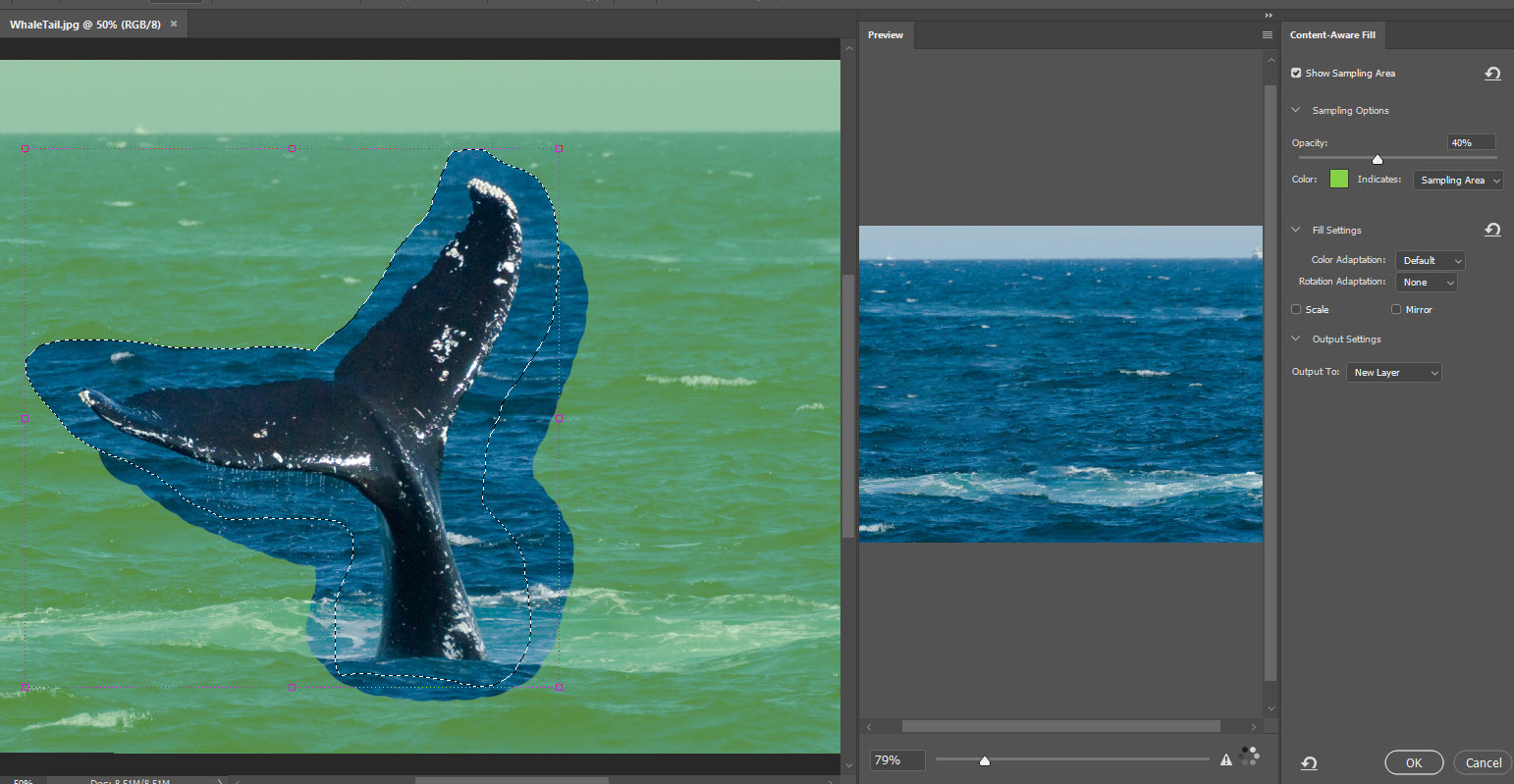 Adobe Photoshop Content Aware Fill
